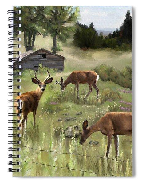 The Calm Spiral Notebook