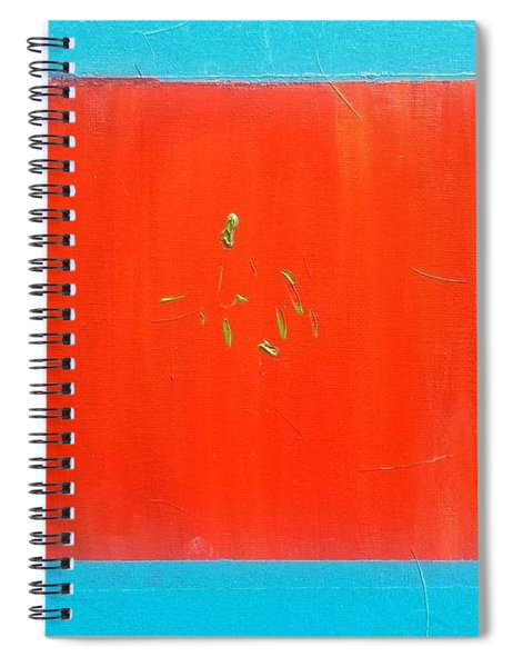 The Candy Store Spiral Notebook