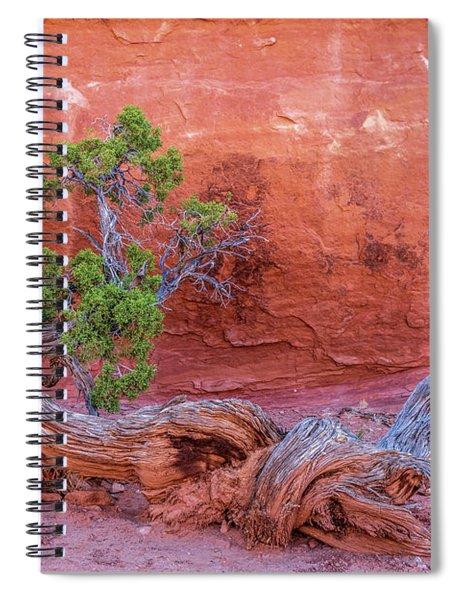 The Canyon Wall Juniper Spiral Notebook