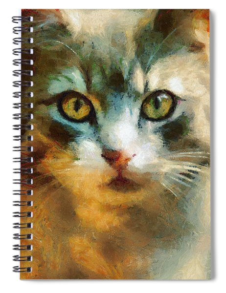 The Cat Eyes Spiral Notebook
