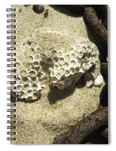The Chain And The Fossil Spiral Notebook