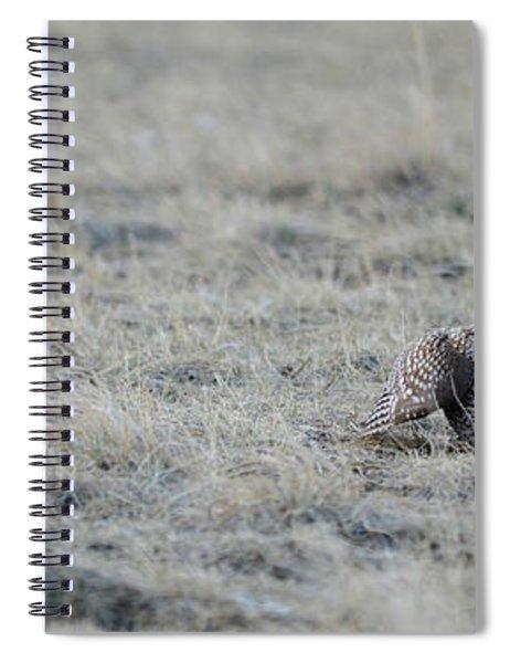 The Challenger Spiral Notebook