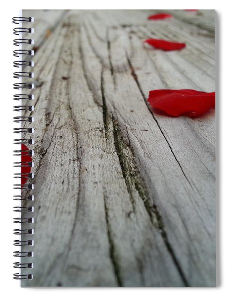 The Character Of Beauty Spiral Notebook