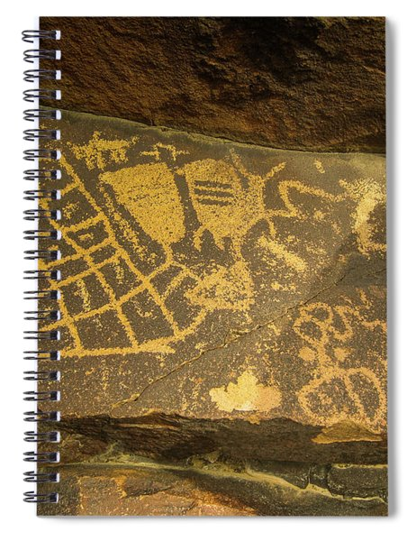 The Checkerboard  Spiral Notebook