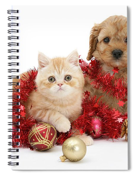 The Christmas Tree Destroyers Spiral Notebook