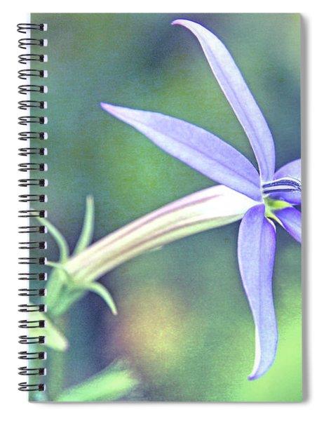 The Color Of Summer I Spiral Notebook