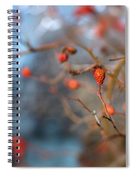 The Color Of Winter Spiral Notebook