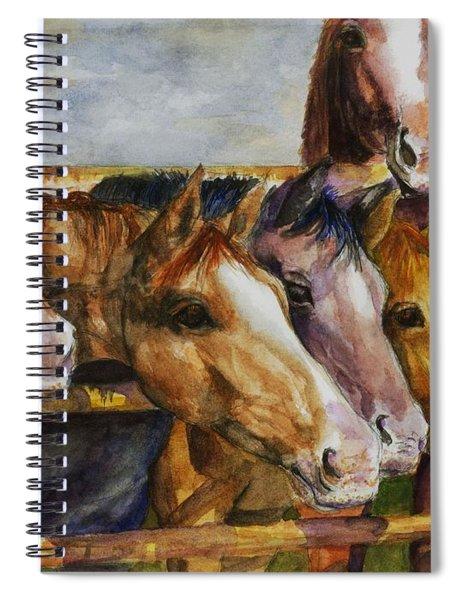 The Colorado Horse Rescue Spiral Notebook