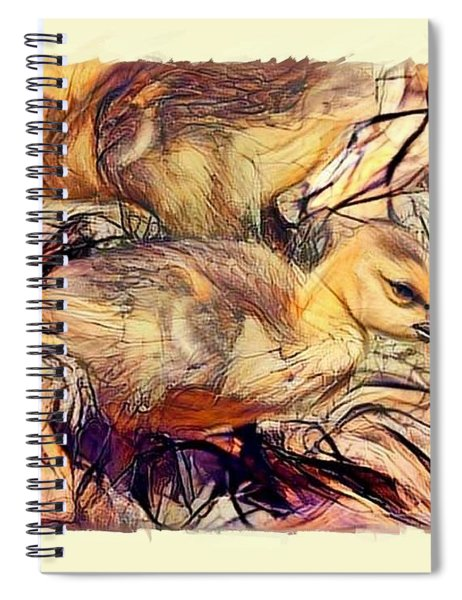 The Critic Spiral Notebook