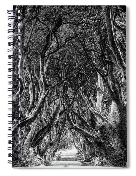 The Dark Hedges Spiral Notebook
