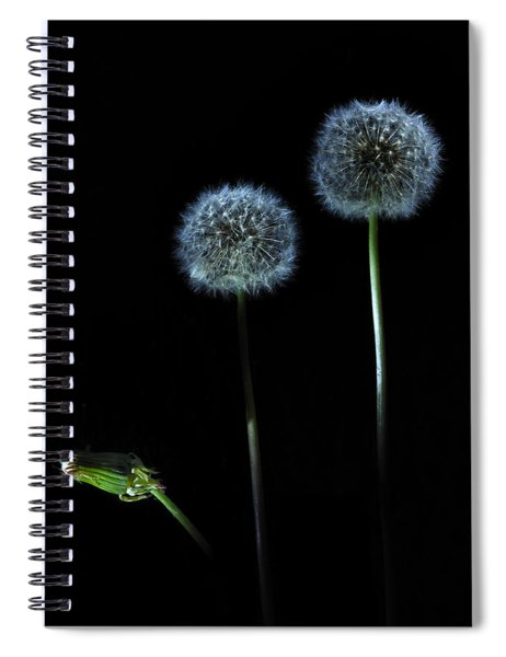 The Darkness Can't Hide You Spiral Notebook