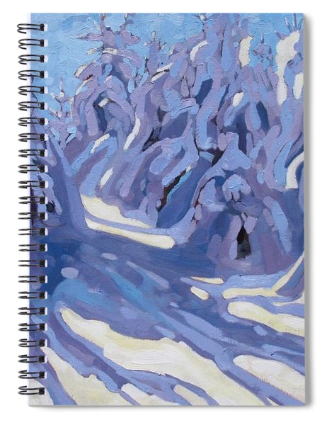 The Day After The Storm Spiral Notebook