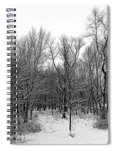 The Depth Of Winter Spiral Notebook