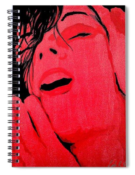 The Ecstasy Spiral Notebook