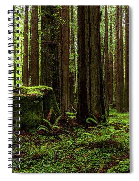 The Emerald Forest Spiral Notebook