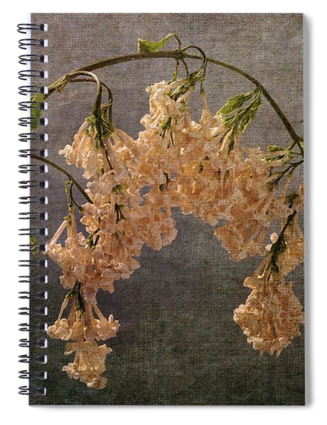 The End Of The Lilacs Spiral Notebook