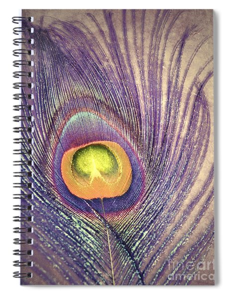 The Feather In Colour Spiral Notebook
