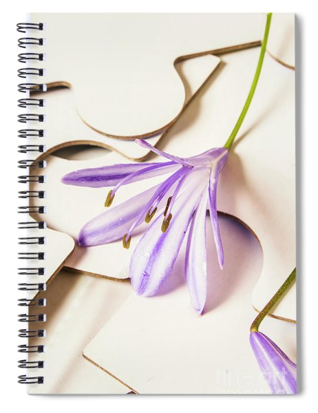 The Femininity Complexity Spiral Notebook