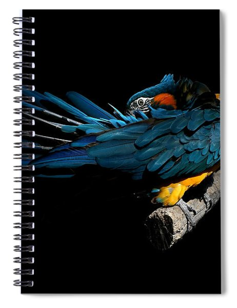 The Fine Art Of Preening Spiral Notebook