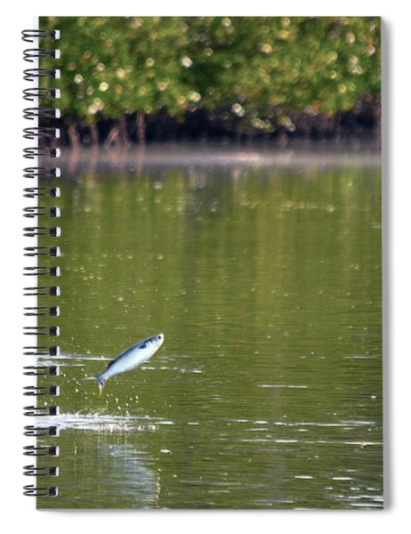 The Fish Are Jumping Spiral Notebook