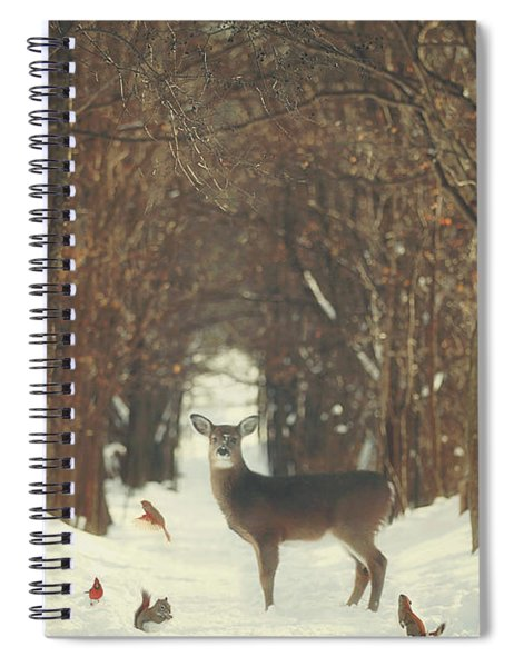 The Forest Of Snow White Spiral Notebook