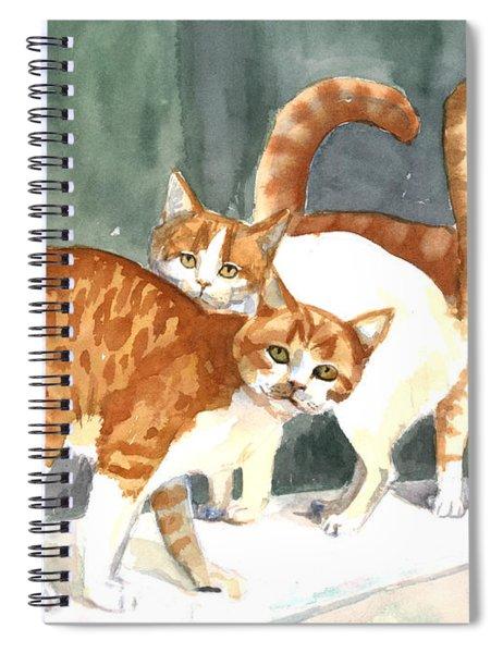 The Ginger Gang Spiral Notebook