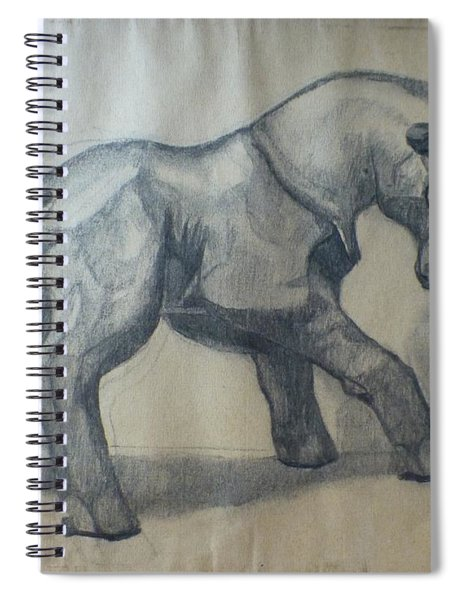 The Glass Goat Spiral Notebook