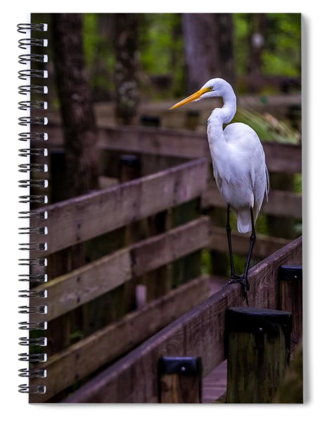 The Great Egret Spiral Notebook