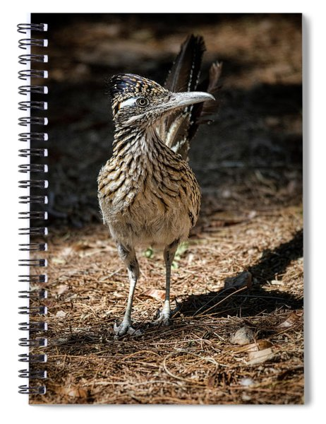 The Greater Roadrunner Walk  Spiral Notebook
