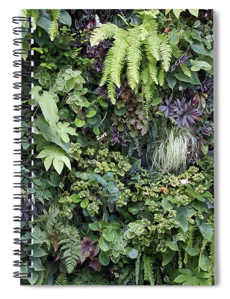 Spiral Notebook featuring the pyrography The Green Room by Michael Lucarelli