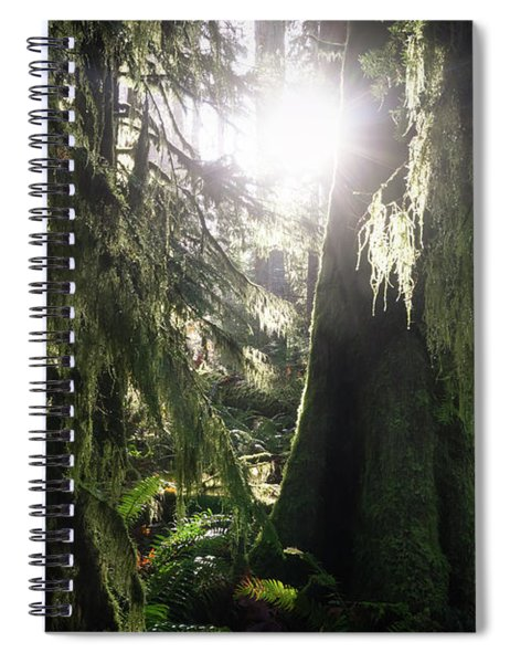 The Grove Spiral Notebook