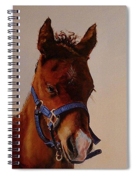 The Halter Spiral Notebook