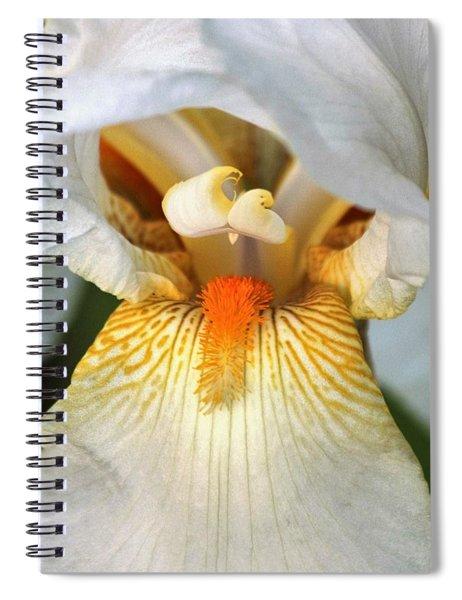 The Heart Of A Bearded Iris Spiral Notebook