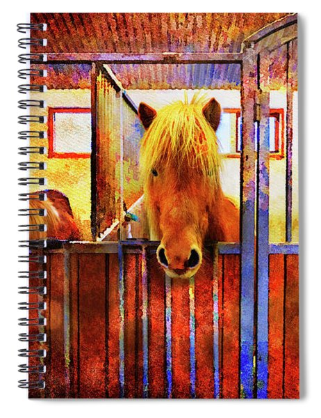 The Iceland Horse 1 Of Hester-stables  Spiral Notebook