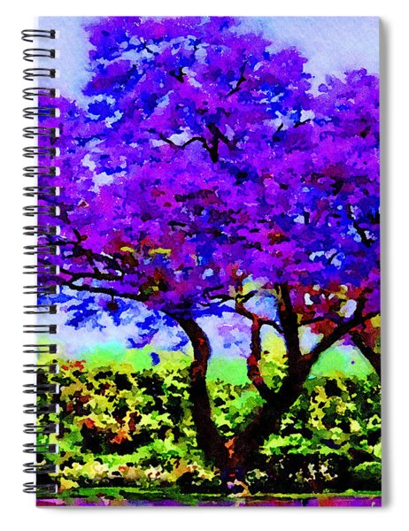 The Jacaranda Spiral Notebook