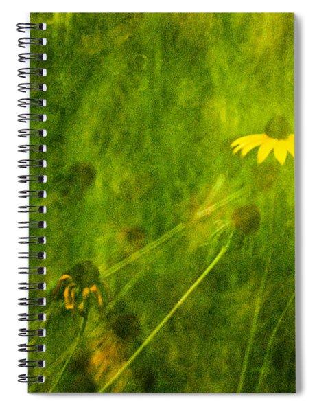 The Last Black-eyed Susan Spiral Notebook
