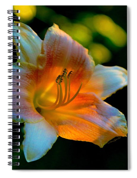 The Last Days Of Summer Spiral Notebook
