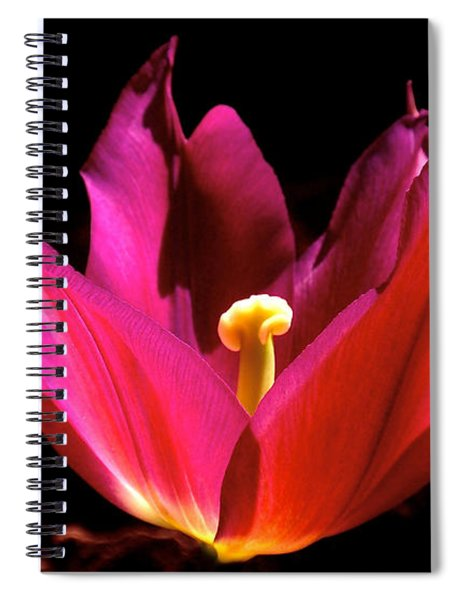 The Light Of Day Spiral Notebook