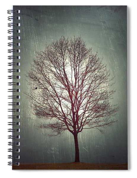 The Light Within Spiral Notebook