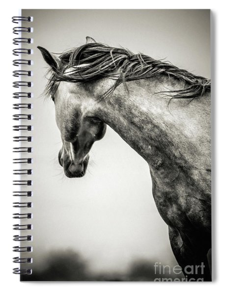 The Lonely Horse Spiral Notebook