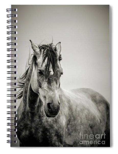 The Lonely Horse Portrait In Black And White Spiral Notebook