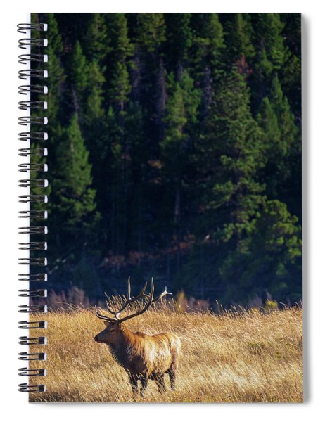 Spiral Notebook featuring the photograph The Loner by John De Bord
