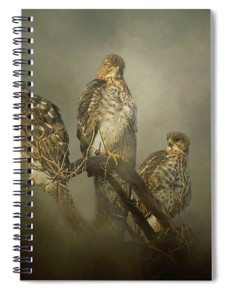 The Lookouts Spiral Notebook