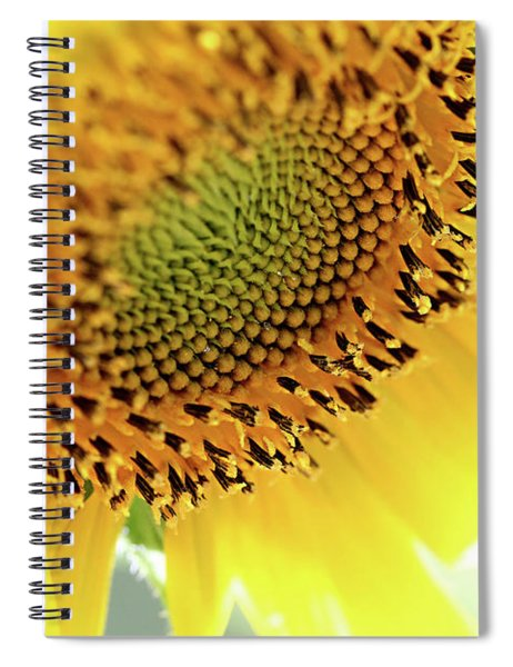 The Lord Bless You Spiral Notebook