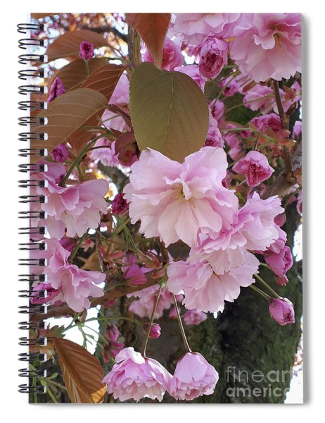 The Loveliest Of Trees The Cherry Now Is Hung With Blossom On The Bough Spiral Notebook