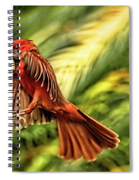 The Male Cardinal Approaches Spiral Notebook