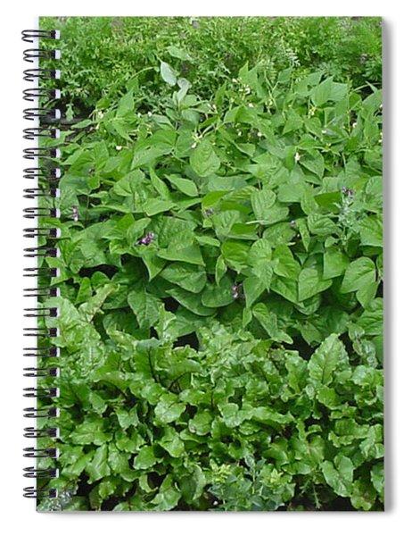 The Market Garden Landscape Spiral Notebook
