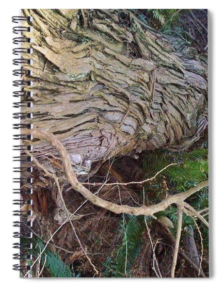 The Mighty Has Fallen Spiral Notebook