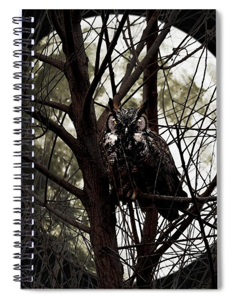 The Night Owl And Harvest Moon Spiral Notebook