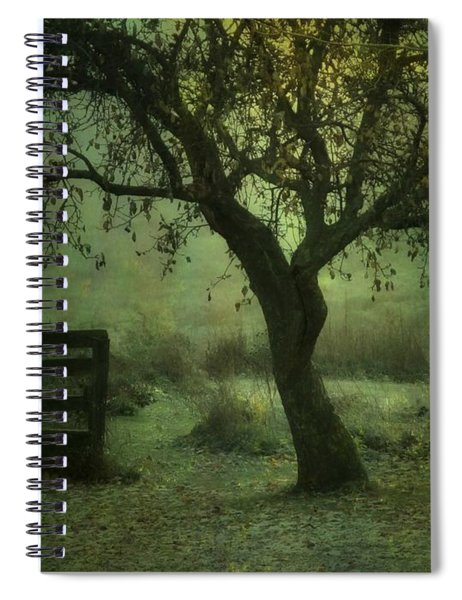 The Old Apple Tree Spiral Notebook